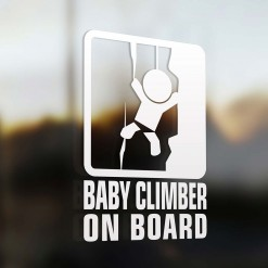 Baby climber on board car sign